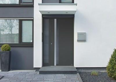 Domovní dveře 1